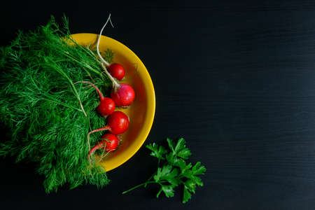 Fresh green dill and young radishes on black background, top view. Dill twigs and radishes on yellow plate, copy of space. Health benefits of fresh herbs and vegetables. Farm products, gardening.