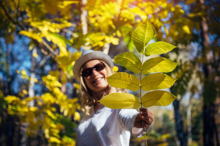 Young woman in white clothes holds out a branch with autumn leaves, blurred background, focus on yellow foliage. Freedom, happiness, healthy lifestyle.