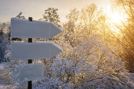 Empty white track pointers, guidepost in sunlight against winter nature background. Directional arrow signs on wooden pole in snowy forest.