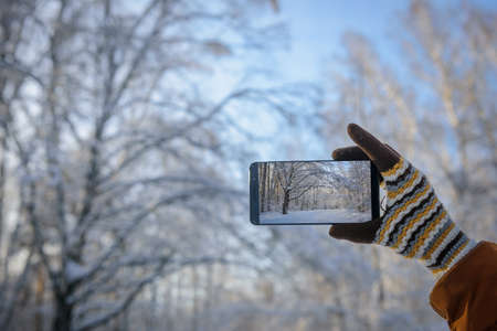 Hand in wool glove holding smartphone and takes pictures of beautiful winter landscape in snow-covered forest. Focus on smartphone screen, blurred background. Working in cold conditions.