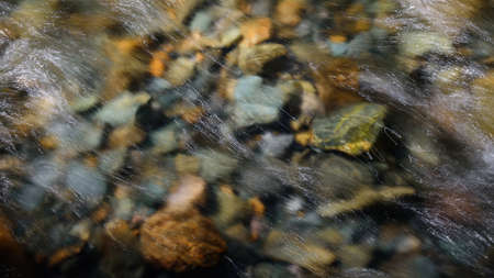 Rocky bottom of mountain river through the clear water, selective focus, blurring the image. Cristal water in the stream shimmers in sunlight. Stone background.