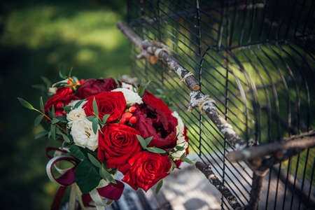 Wedding bouquet of red and white roses in the sunlight outdoors, close-up. Fresh flowers for the bride, decorated with ribbons, birdcage. 版權商用圖片