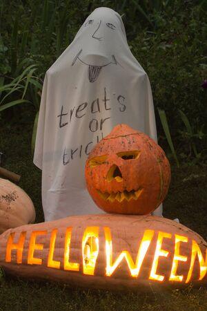helloween: BIg real helloween pumpkin. treats or  tracks