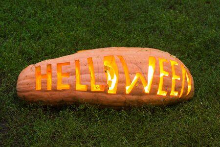 helloween: BIg real helloween pumpkin on the grass Stock Photo