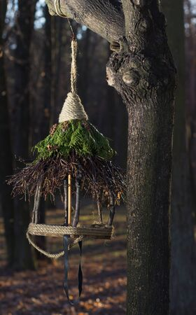 trough: Trough for birds on a tree in autumn forest Stock Photo