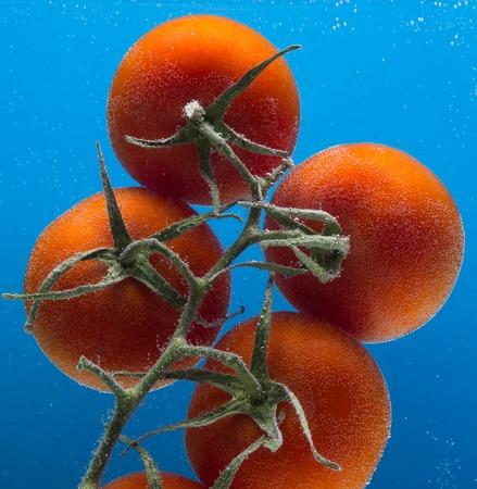 tomato slice: Tomato slice falling into water at blue background