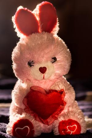 st  valentine: Toy rabbit with heart. Love. St. Valentine Day