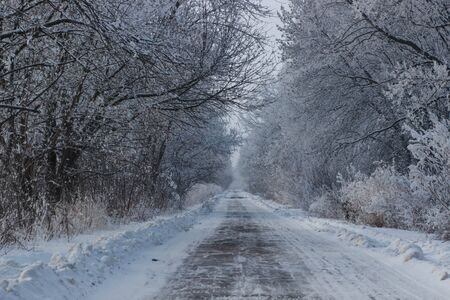 winter tires: scenic veiw of empty road with snow covered landscape while snowing in winter season.