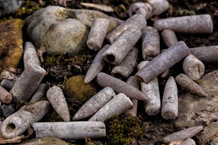 fossilized: Belemnites. The fucking finger