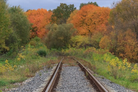 Railway or tramway track in a beautiful autumn park fog. dampness, bright warm autumn colors