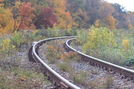 Железная дорога или трамвайная дорога в красивом осеннем парке тумана. сырость, яркие теплые осенние цвета