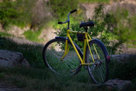 Yellow bike in nature
