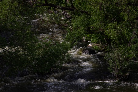 Fast river water with rocks, foam and splashes. Great Falls river bank