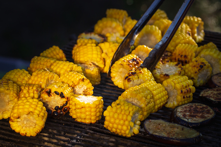 Cooking several fresh yellow brown golden corn cobs on open air barbecue grill, close up.