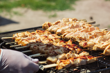 Japanese Yakitori chiken grilled. Фото со стока