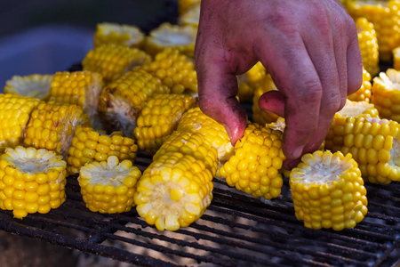 Grilled corns on the grille, ready to serve