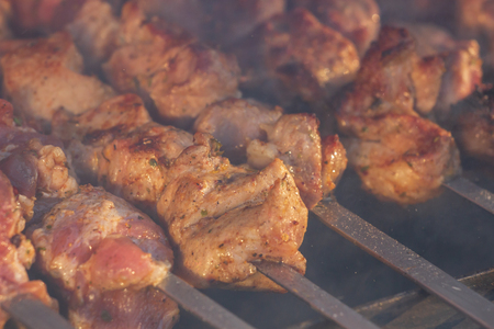 grilled meat skewers, barbecue.