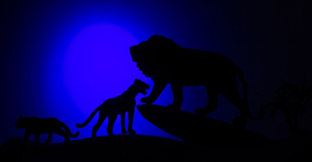 Silhouettes of animals on blure background