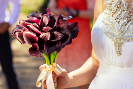 Female hands with a bouquet of burgundy flowers.