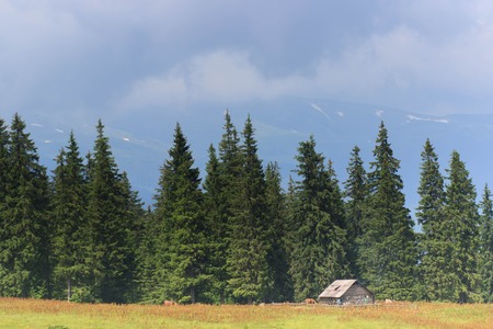 beautiful mountain landscape with wooden house in summer time Фото со стока - 110368341