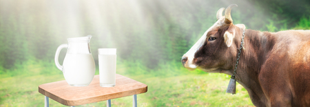 Fresh milk on desk and free space for your decoration. Sunlight summer time and rural landscape with farm cow.