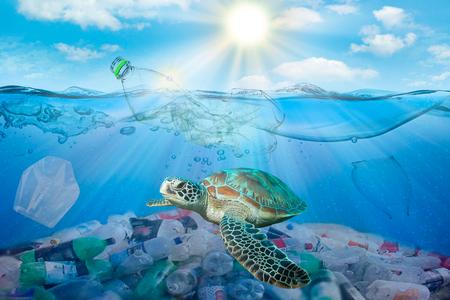 Plastikverschmutzung im Meeresumweltproblem. Schildkröten können Plastiktüten fressen und sie mit Quallen verwechseln Standard-Bild