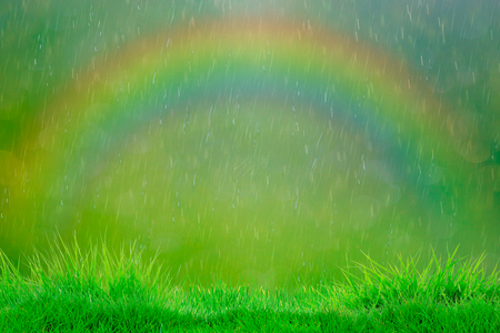 Summer rain. Abstract natural background