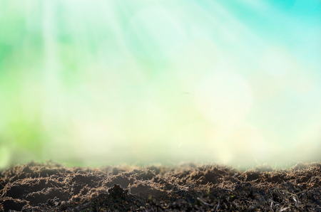 Nature background, pile of soil against green defocused grass with copy space.