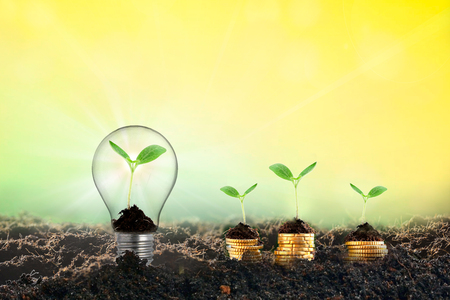 Startup and investor concept. The investor invests money in the idea of the project in order to make a profit. Copy space