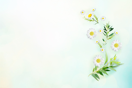 Flowers composition. Pattern made of yellow flowers and eucalyptus leaves on light background. Flat lay, top view, copy space