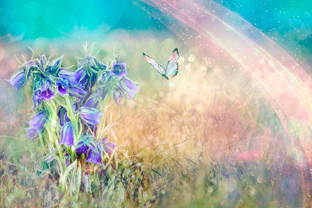 Beautiful blue flowers bell and butterfly in spring nature outdoors against blue sky, macro, soft focus. Magic colorful artistic image tenderness of nature, spring floral wallpaper.