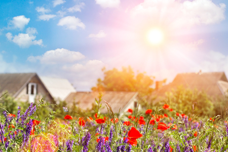 Amazing view of summer beautiful bright red big poppy field landscape in Germany, colorful houses, farms and countryside in the distance, sunny morning sky in the background Фото со стока
