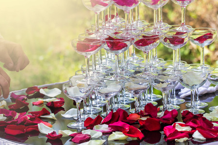 Pyramid with wine glasses on a table decorated with rose petals in the restaurant. Welcome drink at the wedding banquet. Фото со стока