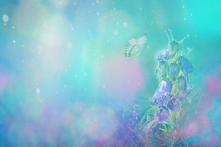 Spring flower blooming and butterfly on blue background in nature outdoors, macro, copy space. Magic moonlight. Cyan