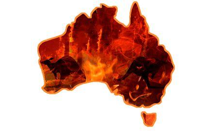 Pray for Australia. Australia bush fire concept. Tree burned by bush fire. 写真素材