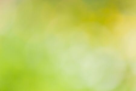 Natural outdoors bokeh in green and yellow tones with sun rays. Soft focus Stock Photo