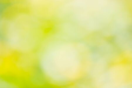 Natural outdoors bokeh in green and yellow tones with sun rays. Soft focus Stock Photo - 147935476