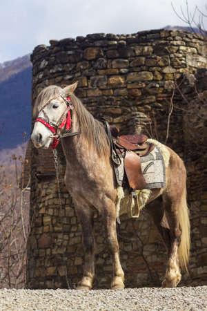 Georgia, Borjomi National Park Kharagauli - horseback trip to the ruins of the castle in the mountains Фото со стока