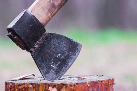 Axe in a log, closeup