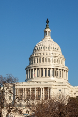 congressional: U S  Capitol Dome Rear Face in Winter Afternoon Sunshine against Clear Bly Sky Stock Photo