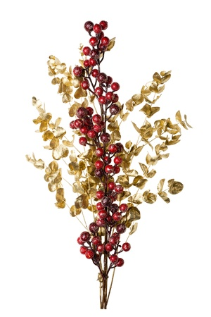 Sparkly Red Berries on Golden Leaves Isolated Background with Copy Space photo