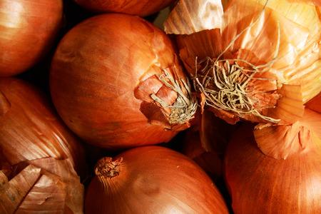 cebollas: Cebollas
