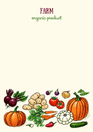 Layout design with farm vegetables. Vector color food sketch with pumpkin, carrot, tomatoes, potatoes, beet, squash, onion pepper