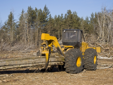 Log Skidder Stock Photo