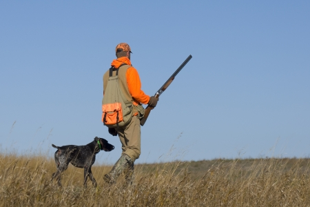 Pheasant Hunting Zdjęcie Seryjne - 17785269