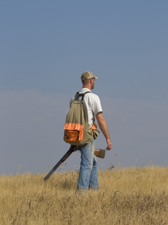 wirehair: Bird Hunter