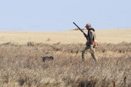 drahthaar: Pheasant Hunter
