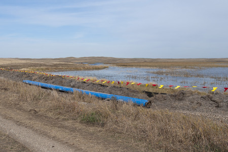 Pipeline next to a Wetland photo
