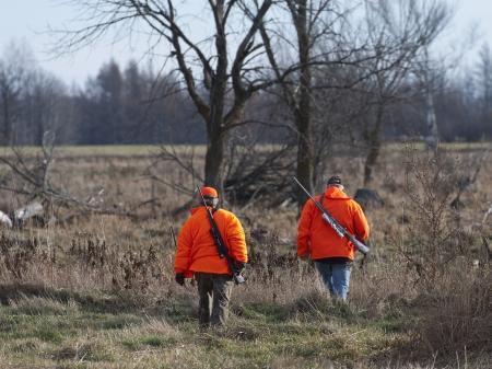 Chasse au cerf dans le Minnesota