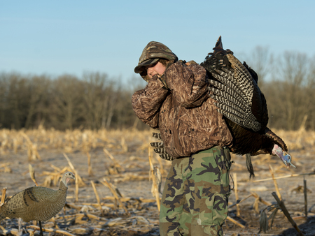 tom turkey: Wild Turkey Hunter